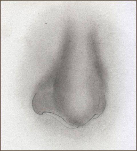 Eine Nase zeichnen mit Bleistift -Wie zeichnet man eine Nase- Anleitung -David Te