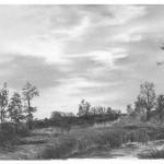 Himmel und Wolken mit Bleistift zeichnen –Anleitung – Diane Wright