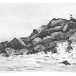 Wasser, Seen ,Wellen und das Meer zeichnen – Anleitung – Diane Wright
