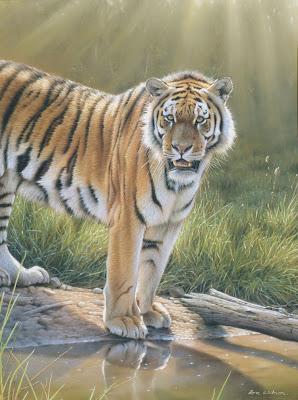 ein tiger am wasser tiere zeichnen pastellzeichnung eric wilson wie malt zeichnen. Black Bedroom Furniture Sets. Home Design Ideas