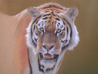 ein tiger am wasser tiere zeichnen pastellzeichnung. Black Bedroom Furniture Sets. Home Design Ideas