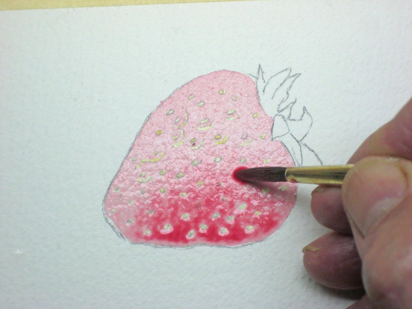 Dry Cake Watercolors