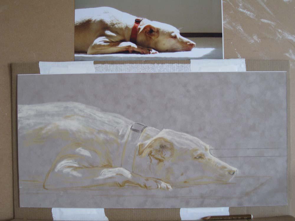 Einen Hund zeichnen mit Pastellkreide Tiere zeichnen –  Anleitung von Kari Tirrell