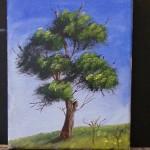 Einen Baum malen ,Wie malt man einen Baum ? Video Bäume malen - Dirk Schneemann