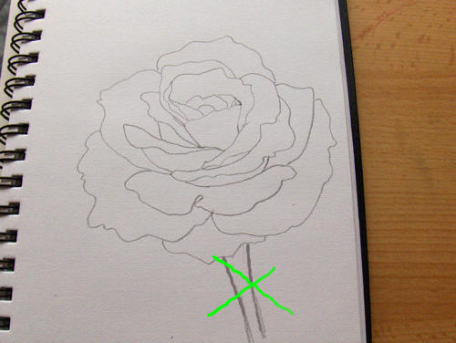 So Zeichne Ich Eine Rose Monika Kunze Wie Malt Mande Zeichnen