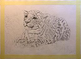 Eine Zeichnung Auf Leinwand übertragen Wie Malt Mande Zeichnen