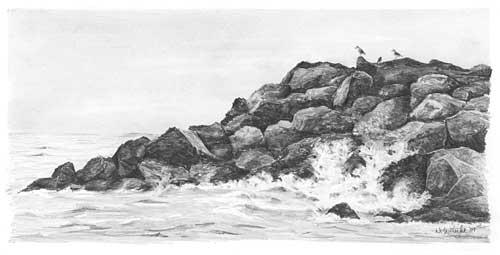 Wasser Seen Wellen Und Das Meer Zeichnen Anleitung Diane