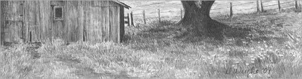 Gras ,Gräser Büsche mit Bleistift Zeichnen –Anleitung- Diane Wright