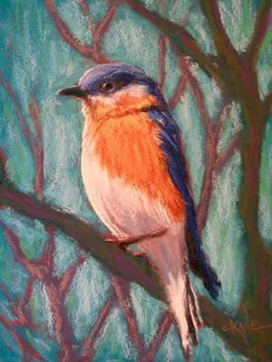 Einen Vogel  mit Pastellkreide zeichnen –Anleitung- Christine Novak Cane