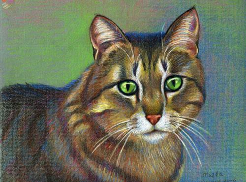 Die Katze Zeichnen Mit Buntstiften Tiere Mit Bunstift Zeichnen Wie