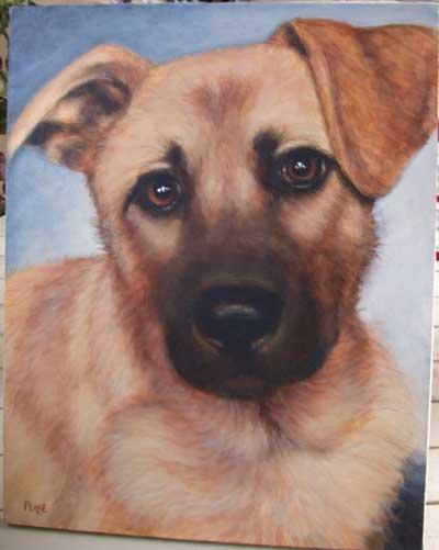 Tiere Malen Hunde Malen Fell Mit Acrylfarben Malen Leslie Anne