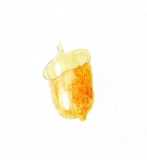 acordsimplecrop02