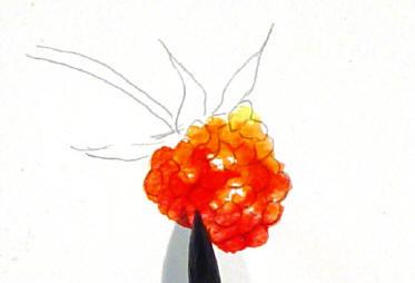 berrystep05web